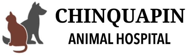 Chinquapin Animal Hospital